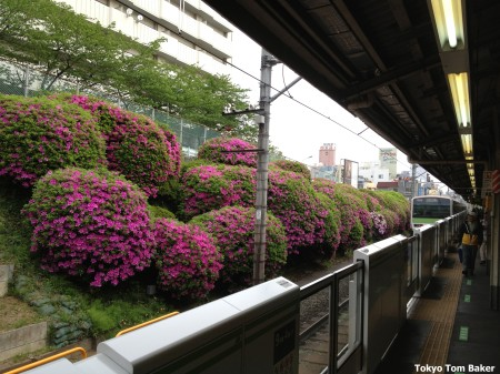 Komagome Station on the Yamanote Line, Toshima Ward